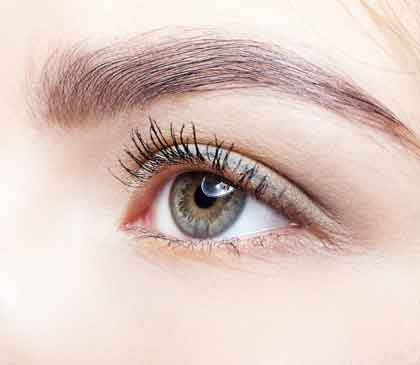 Eyelashes and Brow Treatment